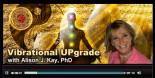 vibrational upgrade system radio shows