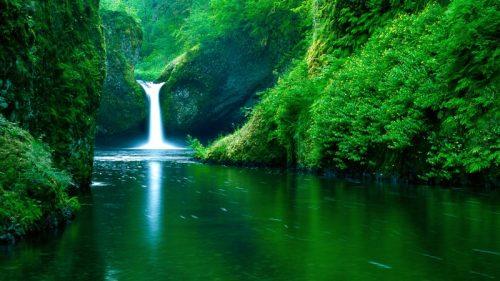 energy healer water